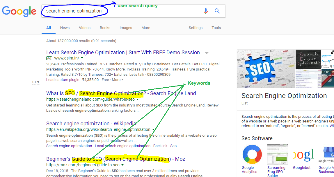 User Search Query